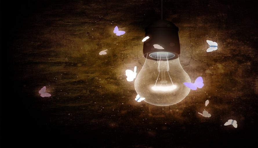 bóng đèn thu hút côn trùng