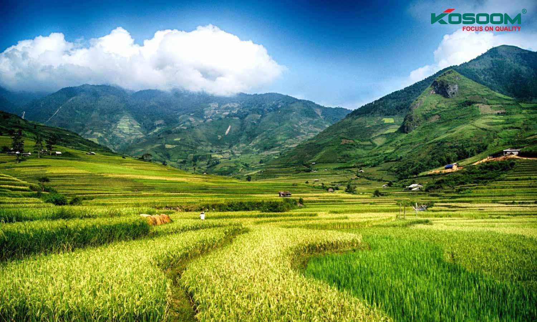 den-led-nha-xuong-tai-dien-bien-chat-luong-1